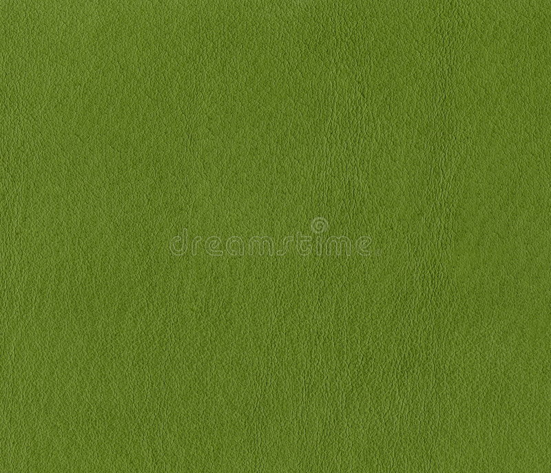slapp textur för grönt läder royaltyfri bild