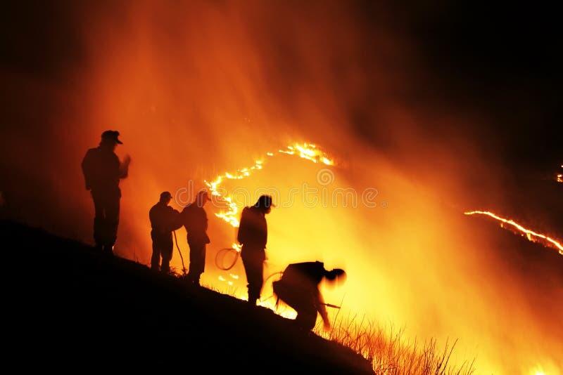 Download Slash and burn stock photo. Image of inferno, burn, flash - 14552706