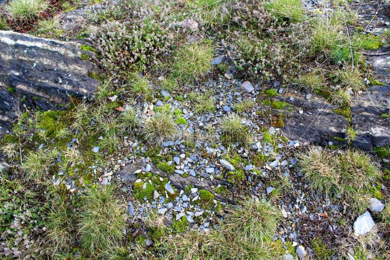 Slate rock background texture. Slate rock as a background texture stock photography