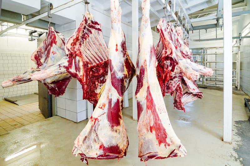 Slaughterhouse arkivfoton