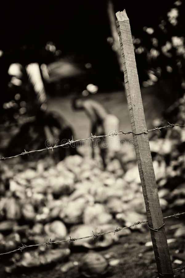 Download Slavery. Monochrome toned stock image. Image of fence - 28838673