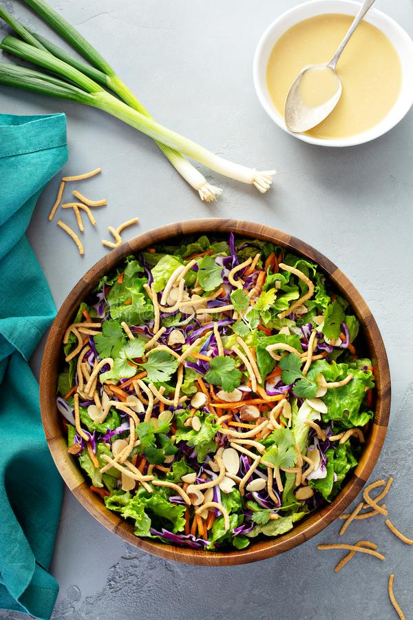 Slaw asiático da salada do estilo fotografia de stock royalty free