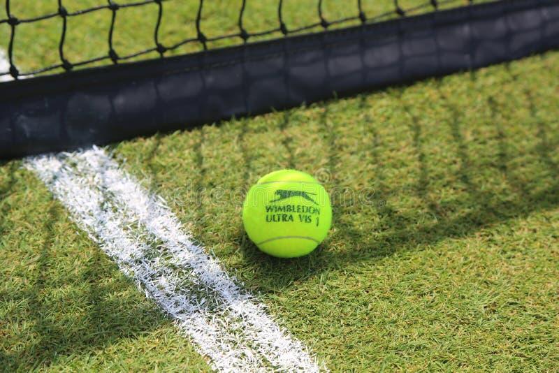 Slazenger Wimbledon Tenisowa piłka na trawa tenisowym sądzie zdjęcie royalty free