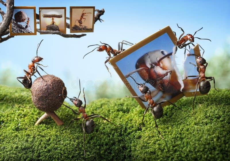 Slecht perspectief van Obscura en fotograaf, mierenverhalen royalty-vrije stock foto