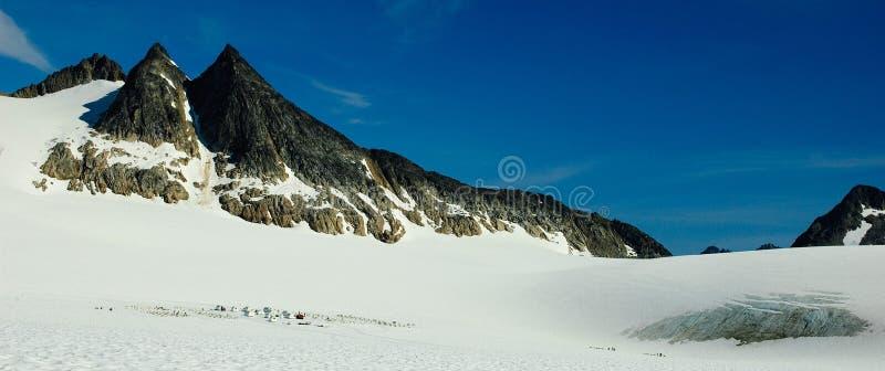 sled för glaciär för alaska lägerhund fotografering för bildbyråer