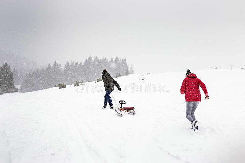 Sled or ski winter sports activity, snow forest in snowfall cold, walk outdoor play fun. Outside royalty free stock image