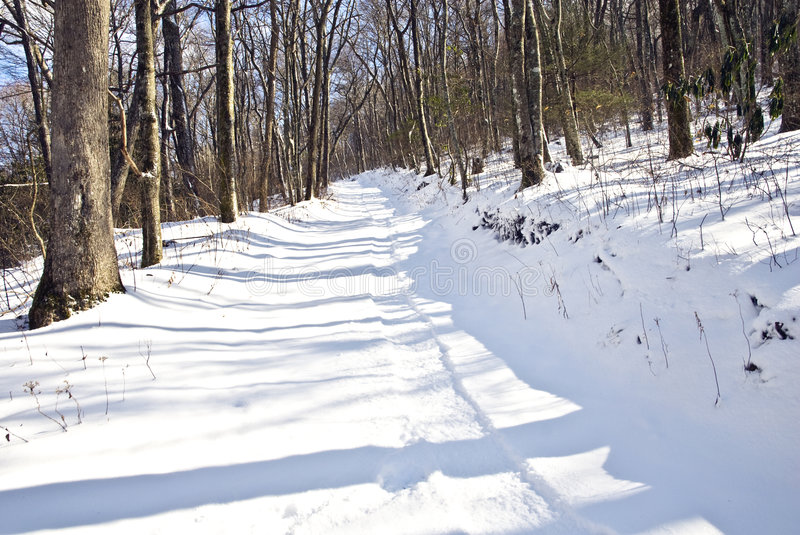Download Sled Tracks In The Snow Stock Images - Image: 7343044