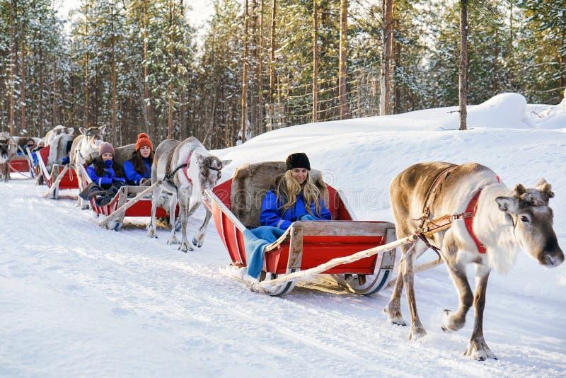 Sledding σαφάρι και άνθρωποι δασικό Lapland βόρεια Φινλανδία ταράνδων στοκ εικόνες