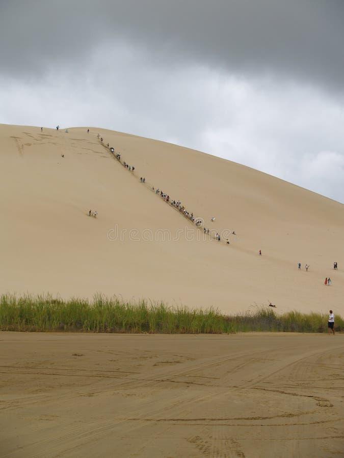 Sledding le sable les dunes s'approchent de quatre-vingt-dix plages Nouvelle-Zélande de mille image libre de droits