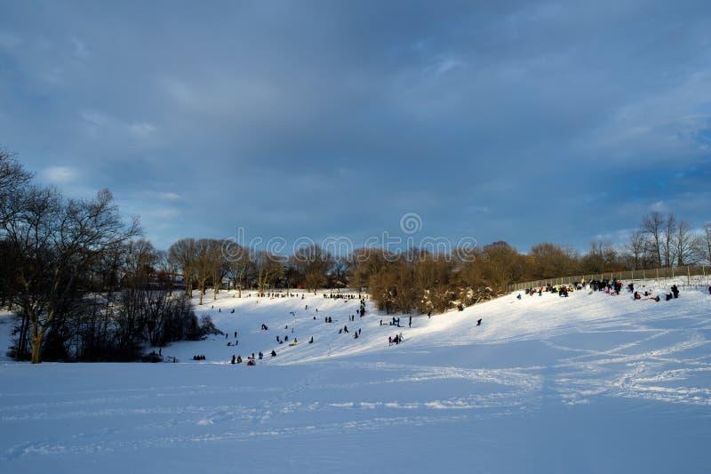 Sledding Schnee lizenzfreie stockfotos