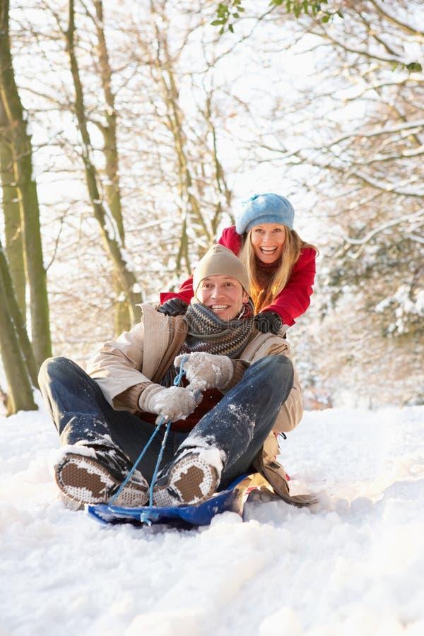 sledging多雪的森林地的夫妇 免版税库存图片