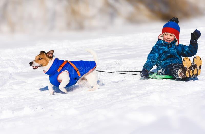 sledging溜滑下坡雪橇的狗愉快的男孩 免版税图库摄影