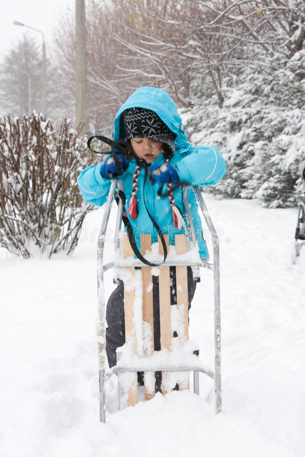 Download Sledging in a blizzard stock photo. Image of sled, december - 7461274