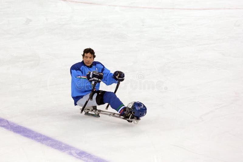 Sleehockey royalty-vrije stock foto