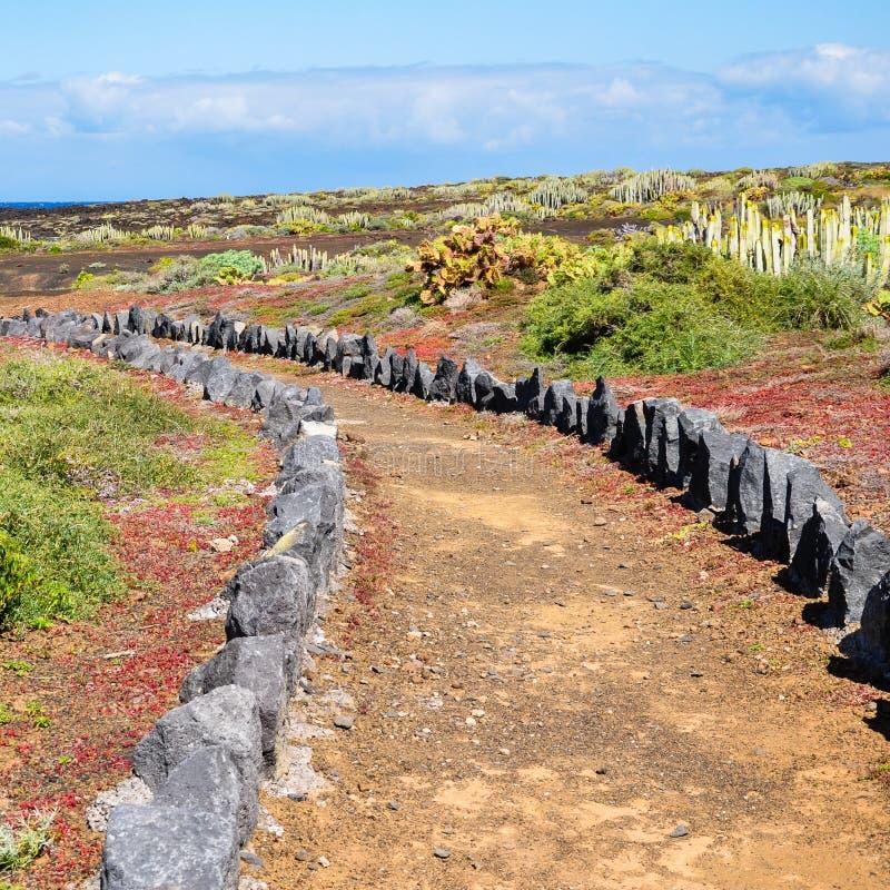 Sleep door het landschap van Tenerife, Canarische Eilanden stock afbeeldingen