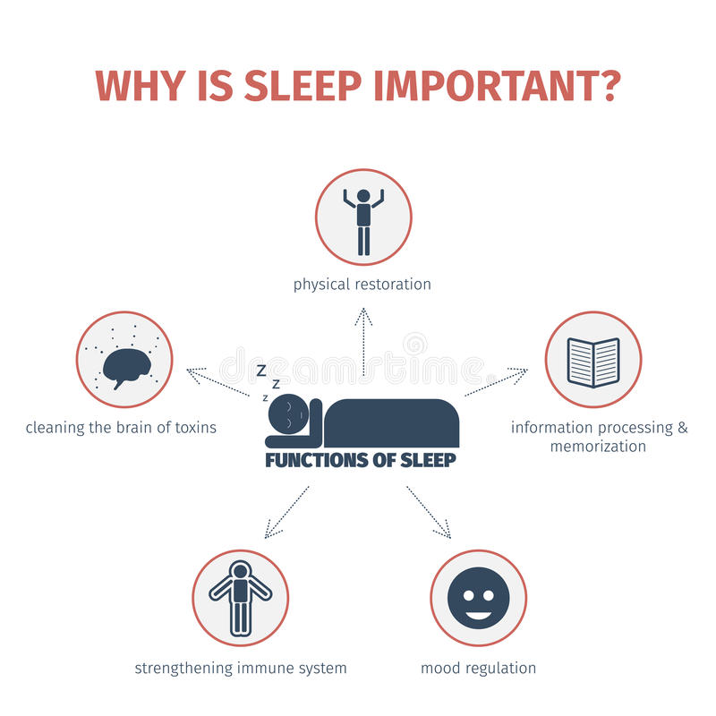 Sleep infographic. Mind map vector illustration
