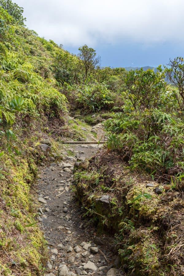 Sleep op actief vulkaanla Soufriere, Caraïbisch Guadeloupe, stock afbeeldingen