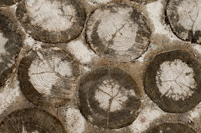 Sleep van houten stompen stock foto's