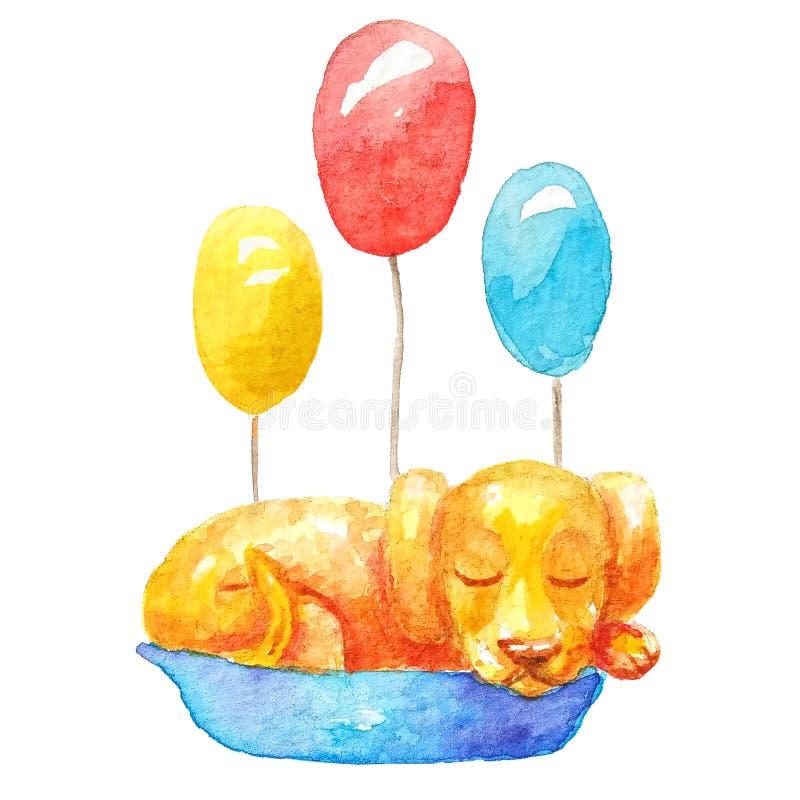Sleepig orange de chiot dans le panier bleu avec 3 ballons multicolores illustration libre de droits