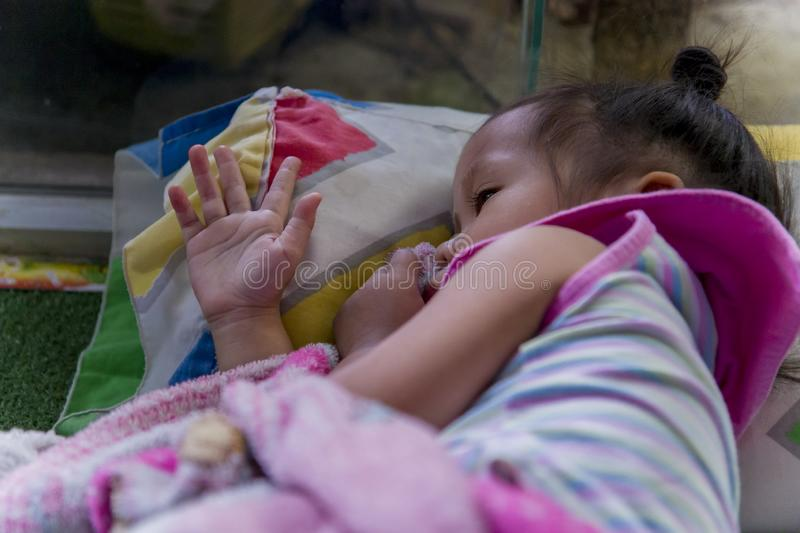 Sleeping Asian little cute baby sucking thumb. High resolution image gallery royalty free stock photography