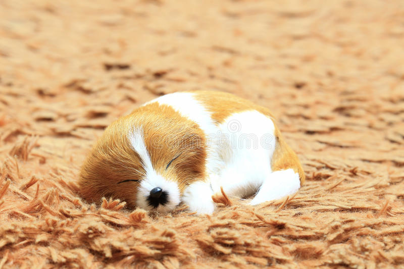A sleeping dog at the carpet. stock photo