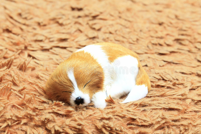 A sleeping dog at the carpet. royalty free stock images