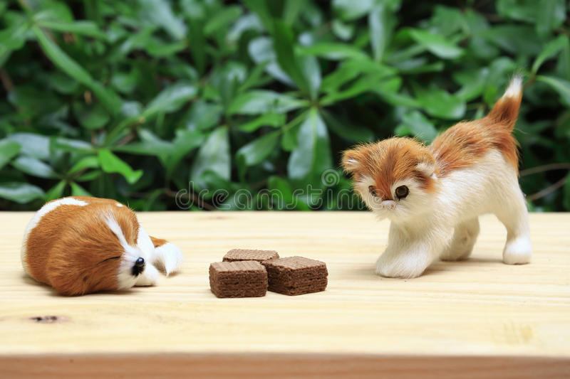 Sleeping dog and a cat look the wafer with chocolate cream. royalty free stock photography