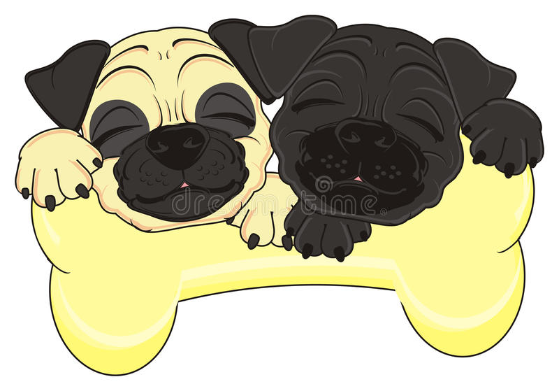 Sleeping dogs and a large bone. Sleeping faces of pugs on a big bone royalty free illustration
