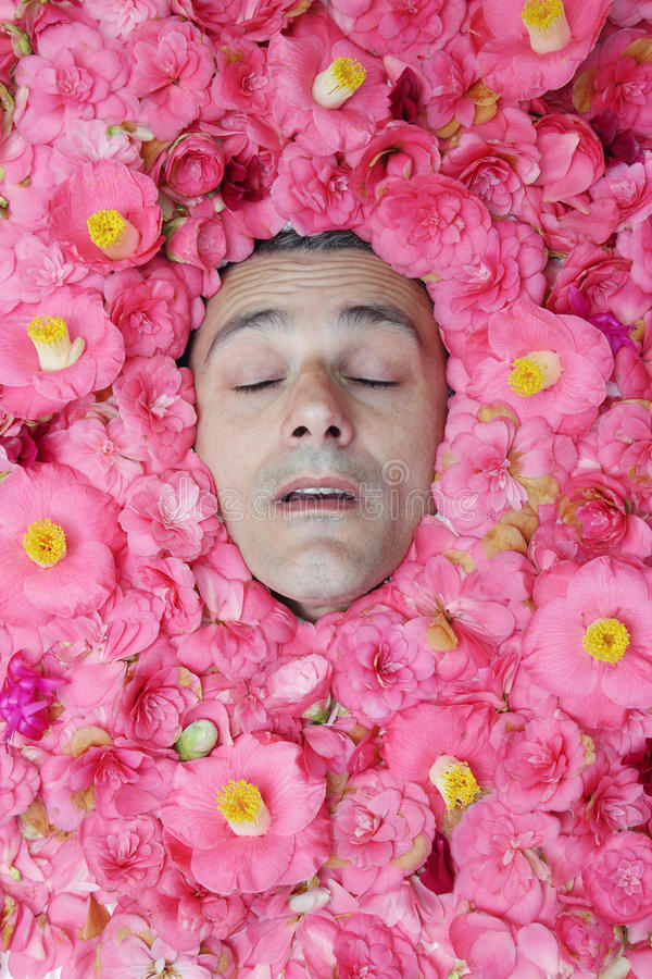 Download Sleeping male beauty stock image. Image of snooze, concept - 30543369