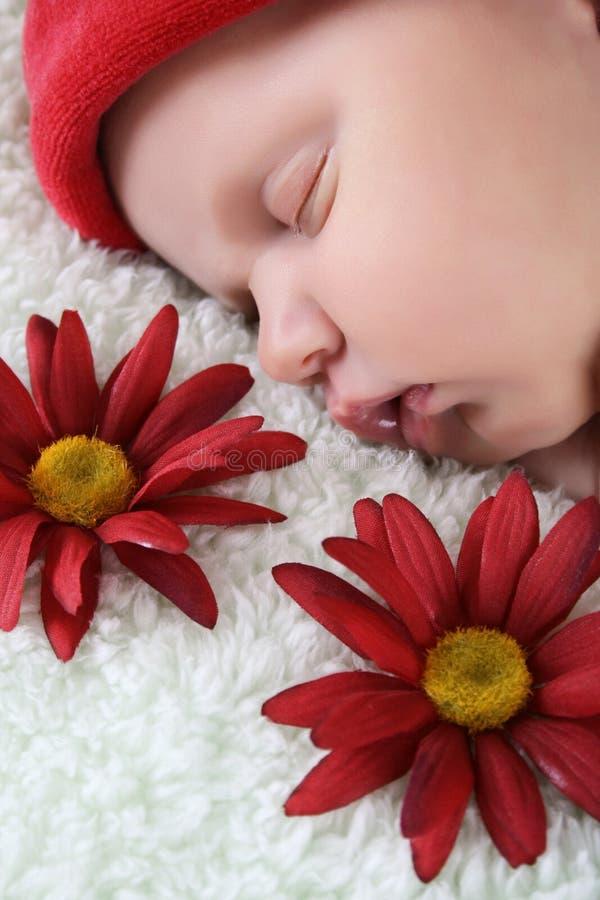 Free Sleeping Newborn Stock Photography - 15696802