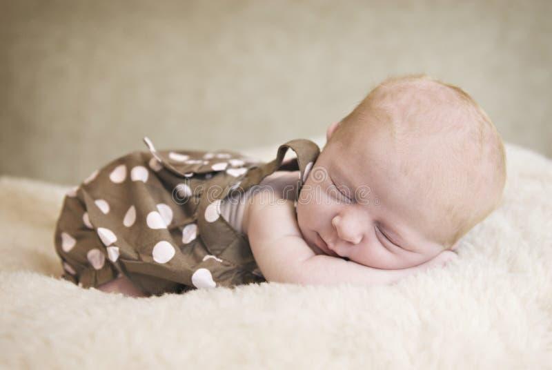 Download Sleeping Newborn Baby stock photo. Image of innocence - 14854490