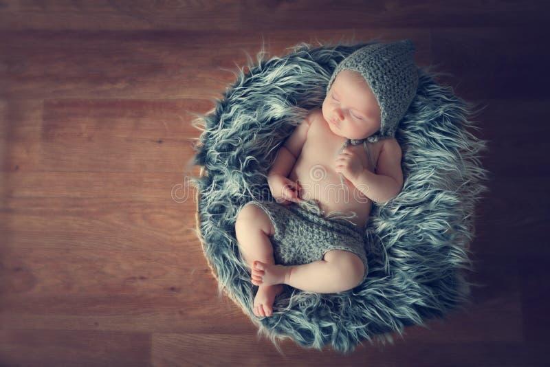 Sleeping newborn baby. In a basket royalty free stock photo