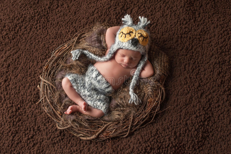 Sleeping Newborn Baby Boy Wearing an Owl Hat. Four week old, newborn baby boy wearing a crocheted owl hat and shorts. He is sleeping on his back in a nest royalty free stock photography
