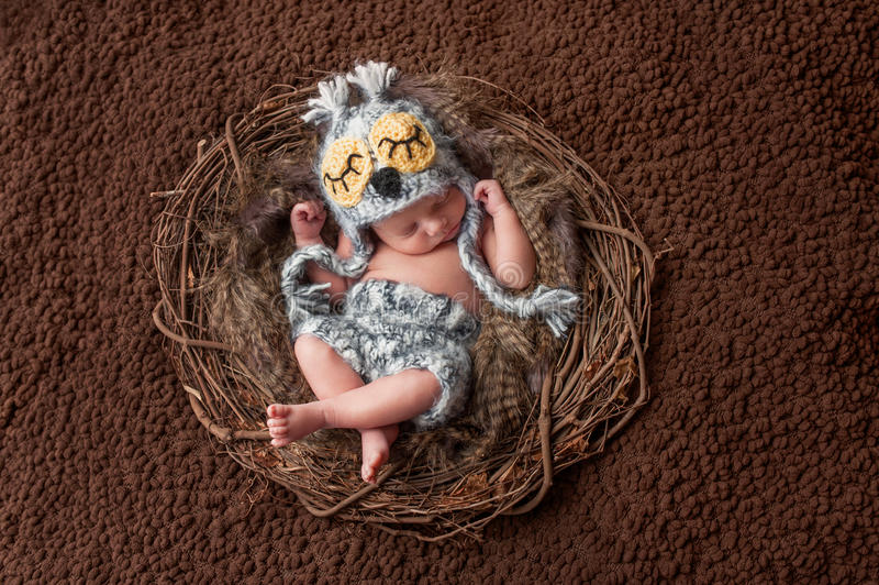 Sleeping Newborn Baby Boy Wearing an Owl Hat. Four week old, newborn baby boy wearing a crocheted owl hat and shorts. He is sleeping on his back in a nest stock images
