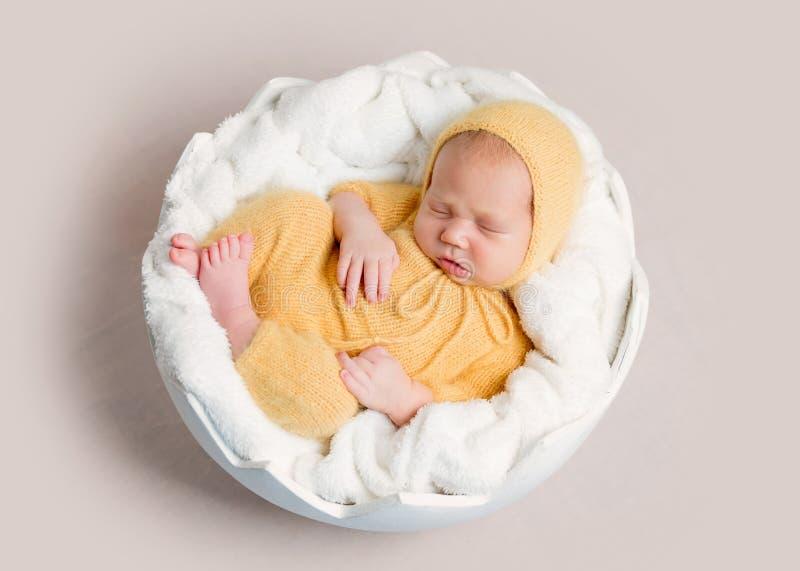 Sleeping newborn baby curled up on round basket royalty free stock photo