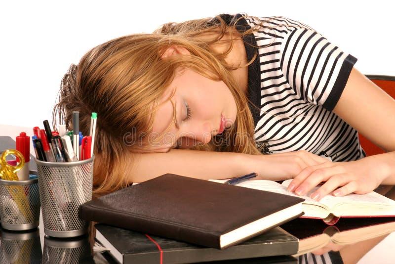 Sleeping student royalty free stock image