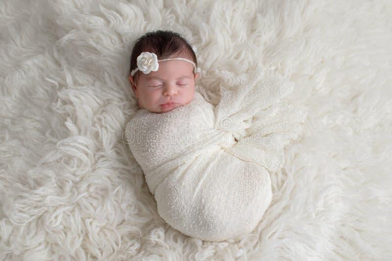 Swaddled, Sleeping Newborn Baby Girl royalty free stock images