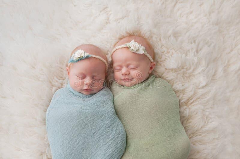 Sleeping Twin Baby Girls royalty free stock image