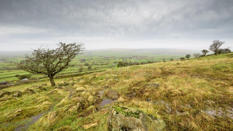 Slemish Hillside on an overcast day royalty free stock photo