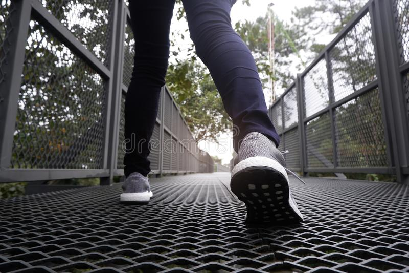 Slender female legs in blue jeans and grey sneakers walking along forest trail royalty free stock images