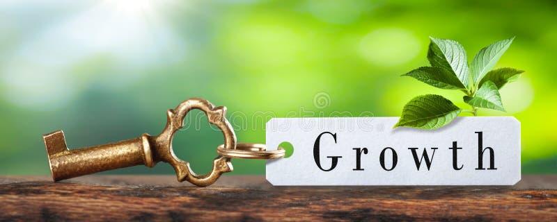 Sleutel tot de Groei royalty-vrije stock afbeeldingen