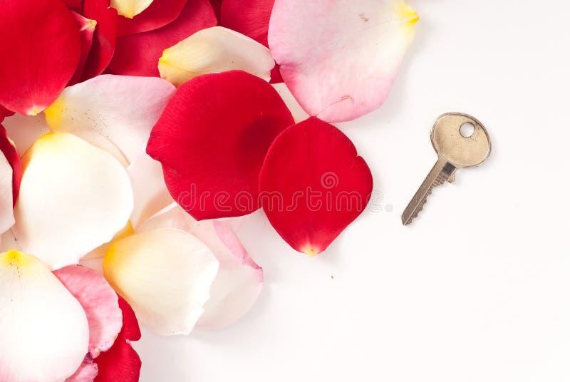 Sleutel van Liefde stock foto