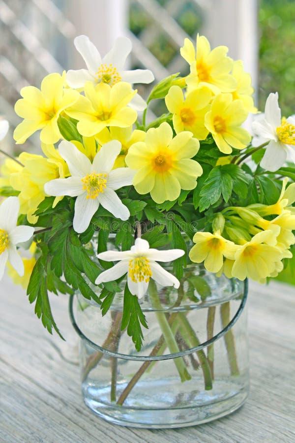 Sleutelbloemen en houten anemonen stock foto