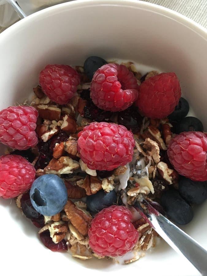 Sli del ¼ del mà della prima colazione con le bacche ed il yogurt fotografia stock libera da diritti