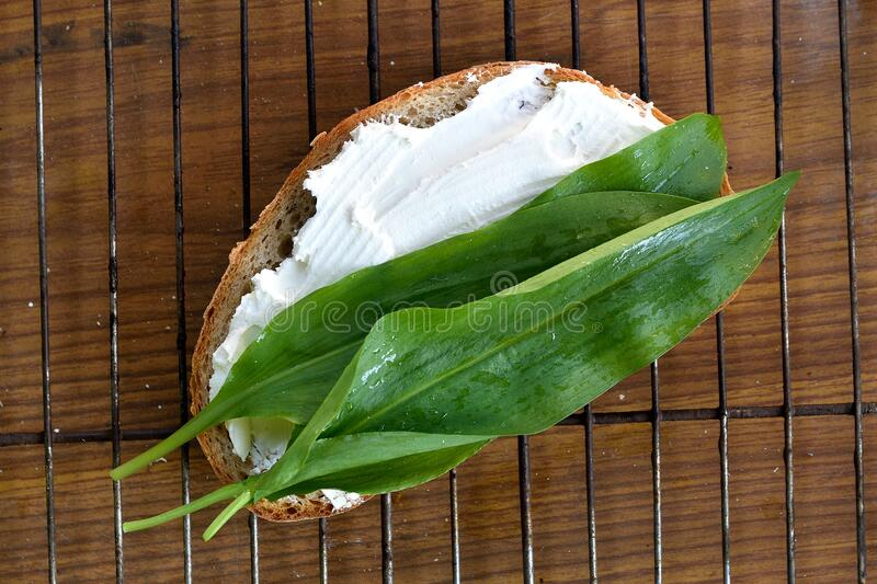 Slice of bread spread with soft cheese and covere with green herb leaves. Bread lied on a grill grid on a wooden table.  stock photo