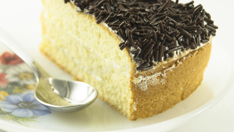 A Slice of Chocolate Chip Cake on a Plate royalty free stock image