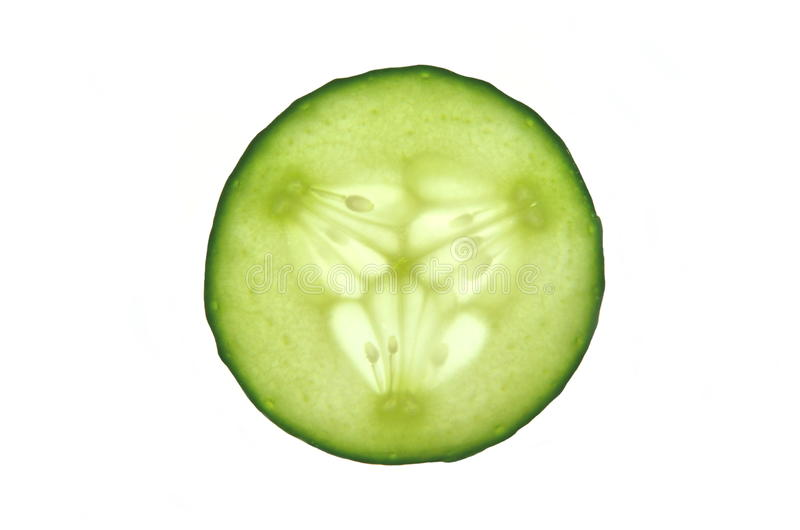 Download Slice of cuccumber stock photo. Image of background, organic - 31369164