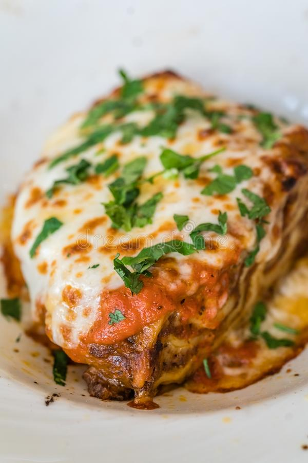 Slice of delicious lasagne stock image