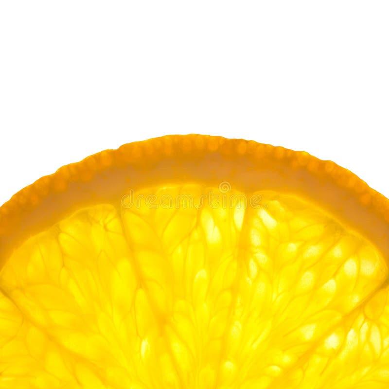 Slice of fresh Orange / Super Macro / Back lit stock images