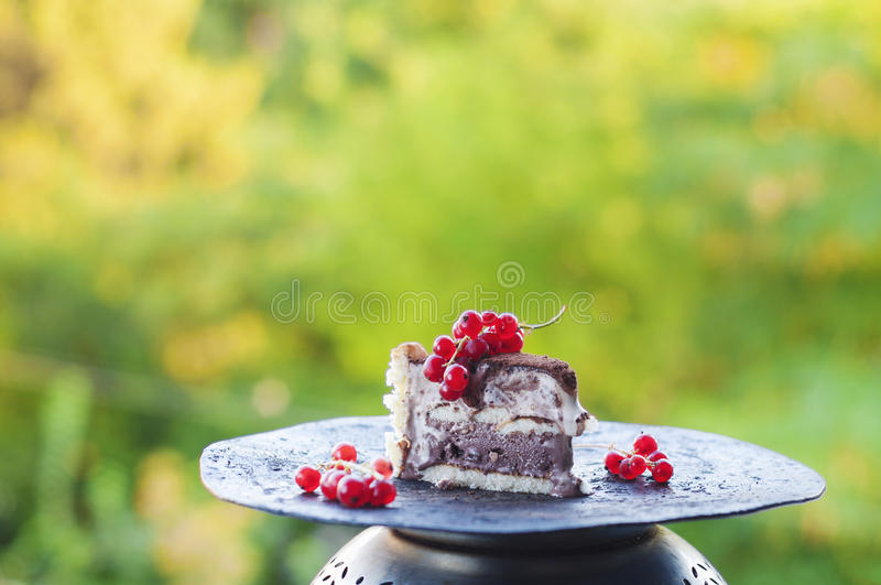 Slice of ice cream tiramisu cake with cranberries stock photography